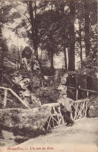 De waterval vóór 1907 (Verzameling postkaarten Dexia bank)