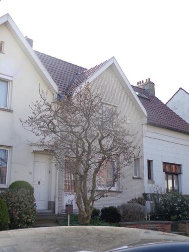 Avenue François-Elie Van Elderen 40, 2015