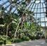 Le Jardin d'Hiver, intérieur, 2020