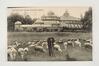 Serres royales de Laeken, 1913, Collection Belfius Banque - Académie royale de Belgique ©ARB-urban.brussels