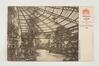 Serres royales de Laeken, la serre du théâtre, 1904, Collection Belfius Banque - Académie royale de Belgique ©ARB-urban.brussels