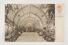 Serres royales de Laeken, l'escalier de l'Embarcadère, s.d, Collection Belfius Banque - Académie royale de Belgique ©ARB-urban.brussels