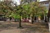 Avenue de Roodebeek 59-61, École no 11, cour de récréation, 2011
