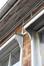 Rue Capronnier 1, École communale no 14, détail des auvents de fenêtre, 2013