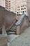 Ancien immeuble BULL situé avenue de Tervueren 41, escaliers depuis la rue Père De Deken, 2020