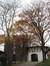 Tilleul 179, 181-183-185-187, 189 (rue du)