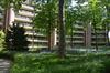Bois 382-384-386 (rue au)