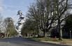Avenue de Bouchout, vue vers le square de l'Atomium© ARCHistory / APEB, 2011