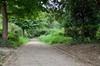 Zone boisée avec des arbustres et un chemin dans le parc Jupiter, 2016