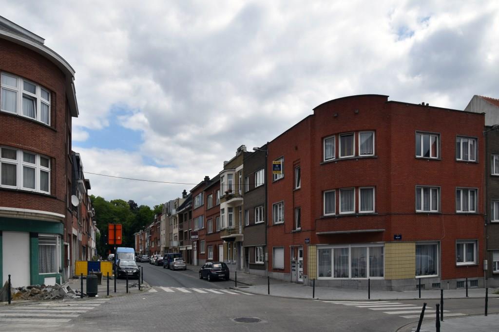 Rue des Horticulteurs, vue du premier tronçon depuis la rue Médori, 2017
