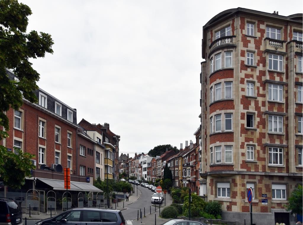 Rue du Mont Saint-Alban, vue depuis la rue des Horticulteurs, 2017
