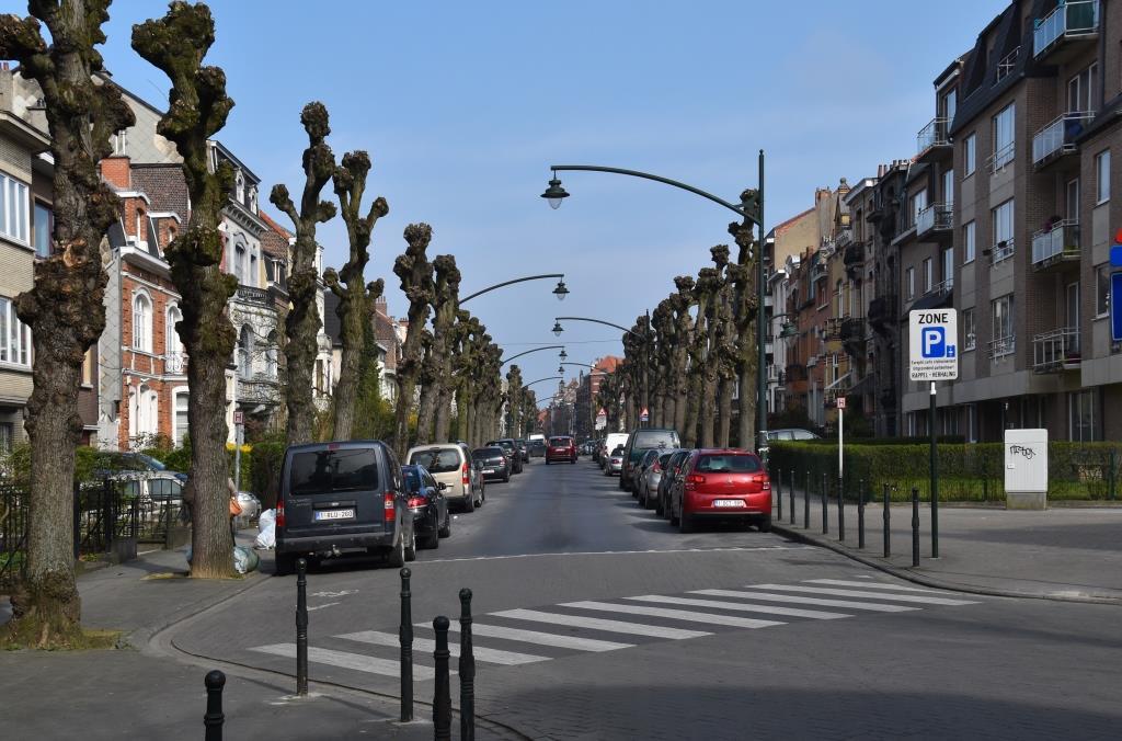 Avenue Prudent Bols, vue depuis l'avenue Richard Neybergh, 2017