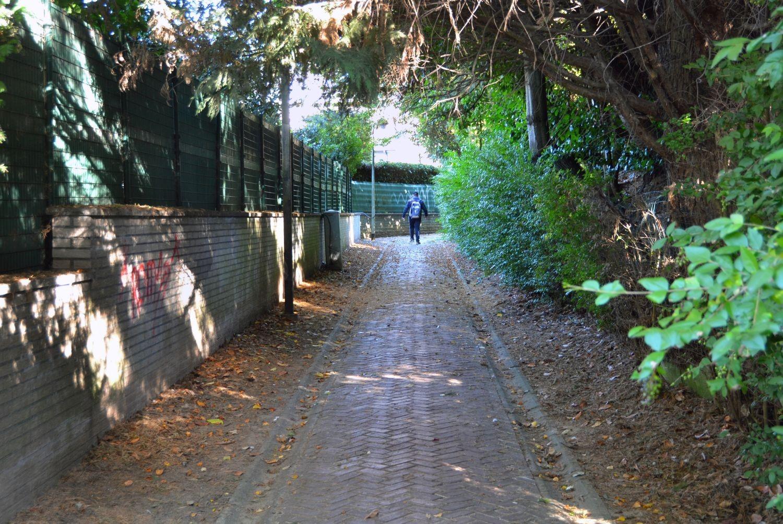 Sentier du Chien de Berger, vue depuis l'avenue de la Croix-Rouge© ARCHistory / APEB, 2018