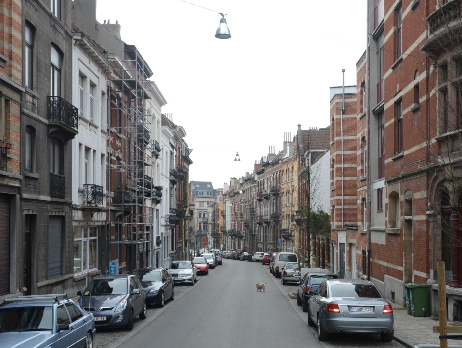 Rue Édouard Fiers, 2013
