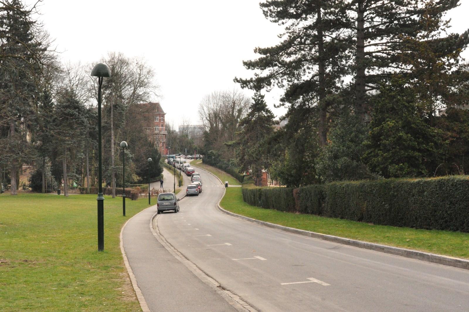 Avenue Ambassadeur Van Vollenhoven, vue vers l\'avenue des Azalées, 2013