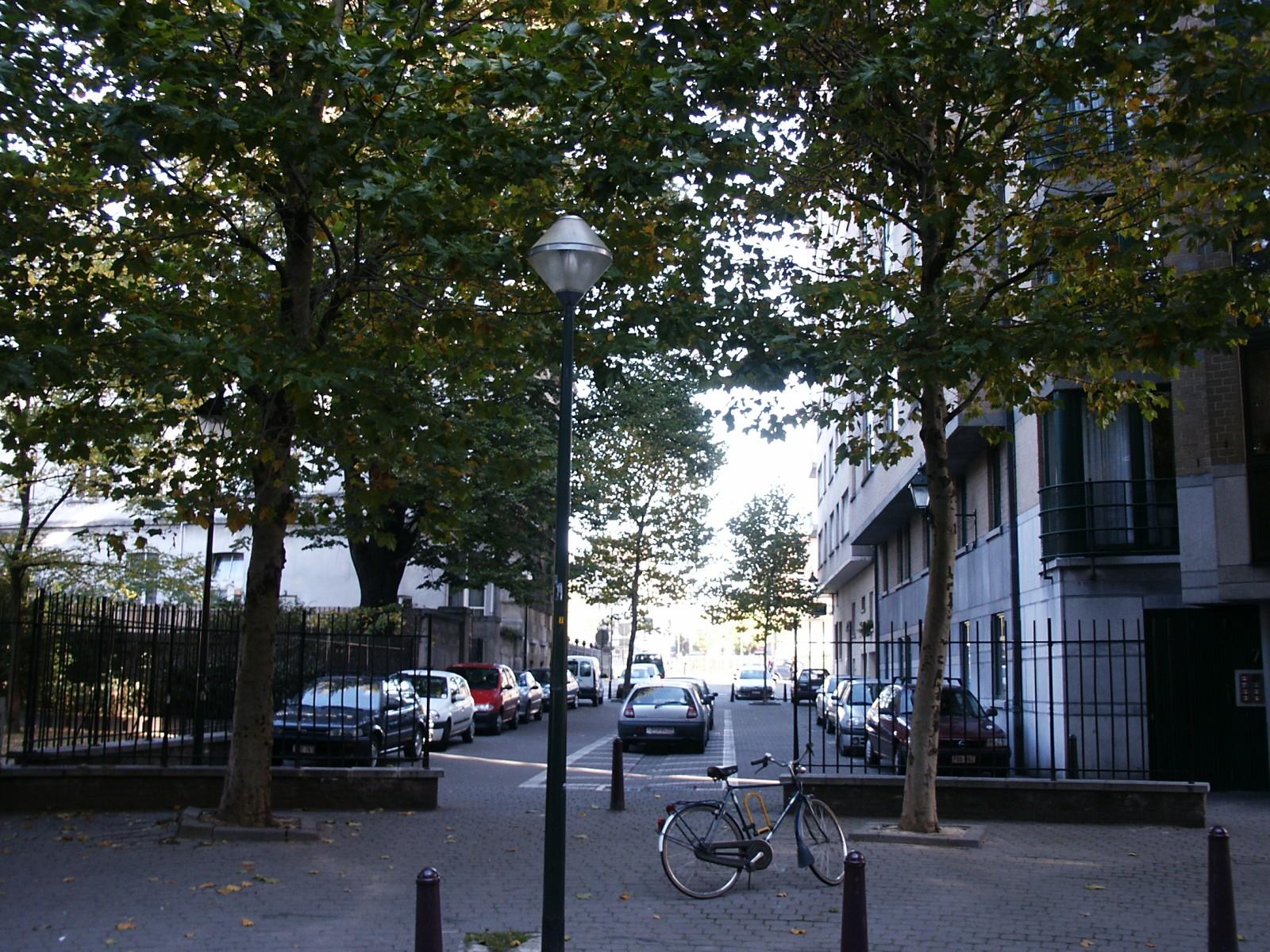 César Depaepestraat., 2004