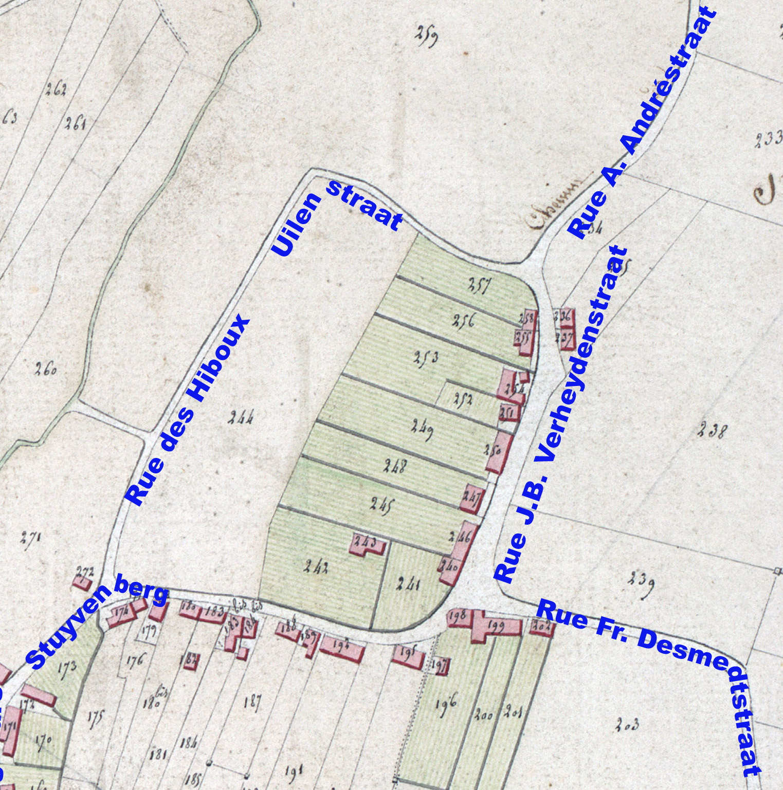 La rue des Hiboux sur l'Atlas communal de 1808.
